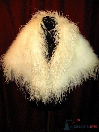 Белая свадебная накидка из перьев. - фото 124 simik