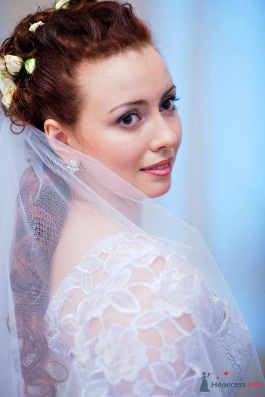 Моя свадьба - фото 60804 Лена-Лиса