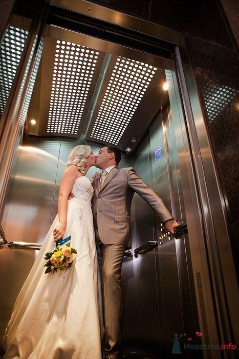 Фото 62758 в коллекции свадебные фотографии - Фотограф Ольга Кедрова