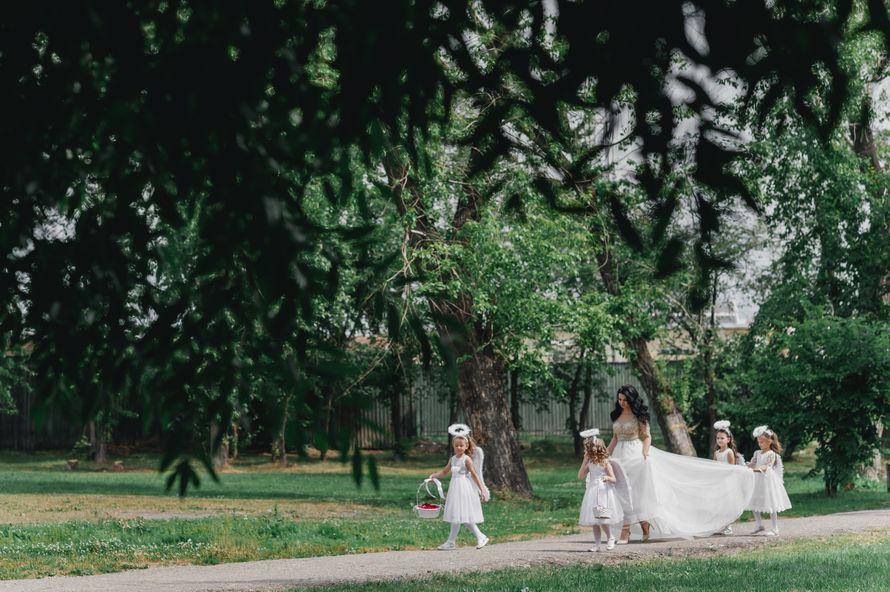 Фото 19550322 в коллекции Портфолио - Фотограф Сергей Бабкин