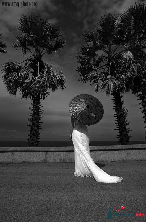 Фото 93013 в коллекции Свадьба - Фотографы Анна и Валерий Орловы