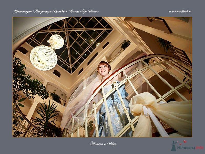 Фото 62051 в коллекции Полина и Игорь - Фотостудия Елены Грабовской и Владимира Сомова