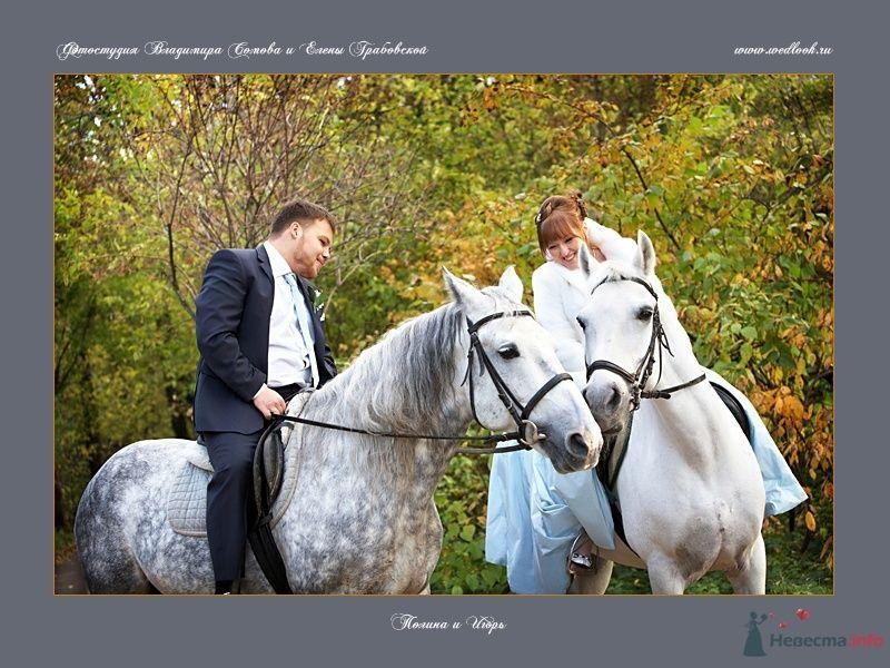 Фото 62057 в коллекции Полина и Игорь - Фотостудия Елены Грабовской и Владимира Сомова