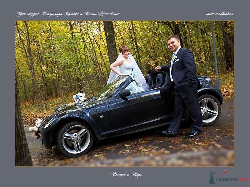 Фото 62064 в коллекции Полина и Игорь - Фотостудия Елены Грабовской и Владимира Сомова