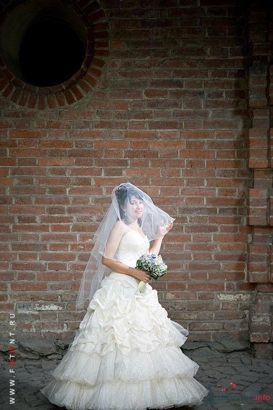 Фото 63824 в коллекции Свадьбы - Фотограф Сергей Алексеев