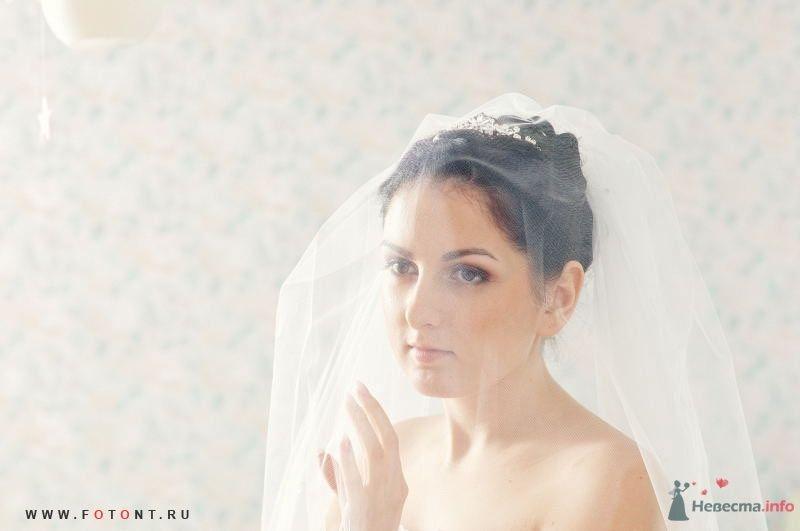 Фото 63830 в коллекции Свадьбы - Фотограф Сергей Алексеев