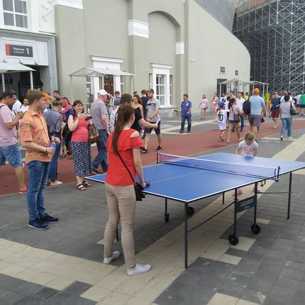 Теннисный стол в аренду