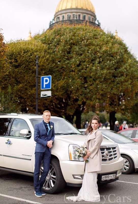 Фото 19888591 в коллекции Cadillac Escalade - MerryCars - аренда авто