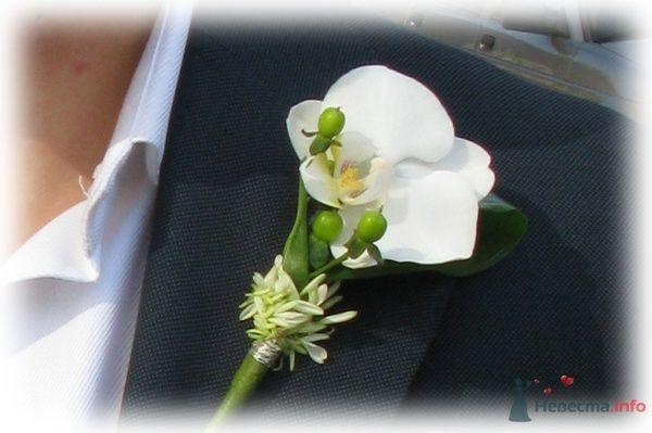 Бутоньерка для жениха от  Принцессы Цветов  - фото 63409 Невеста01