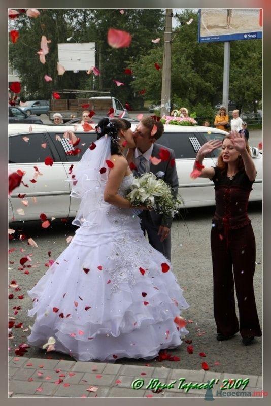 Фото 64123 в коллекции Свадьбы - Cвадебный фотограф Юрий Тарасов