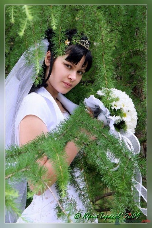 Фото 64140 в коллекции Свадьбы - Cвадебный фотограф Юрий Тарасов