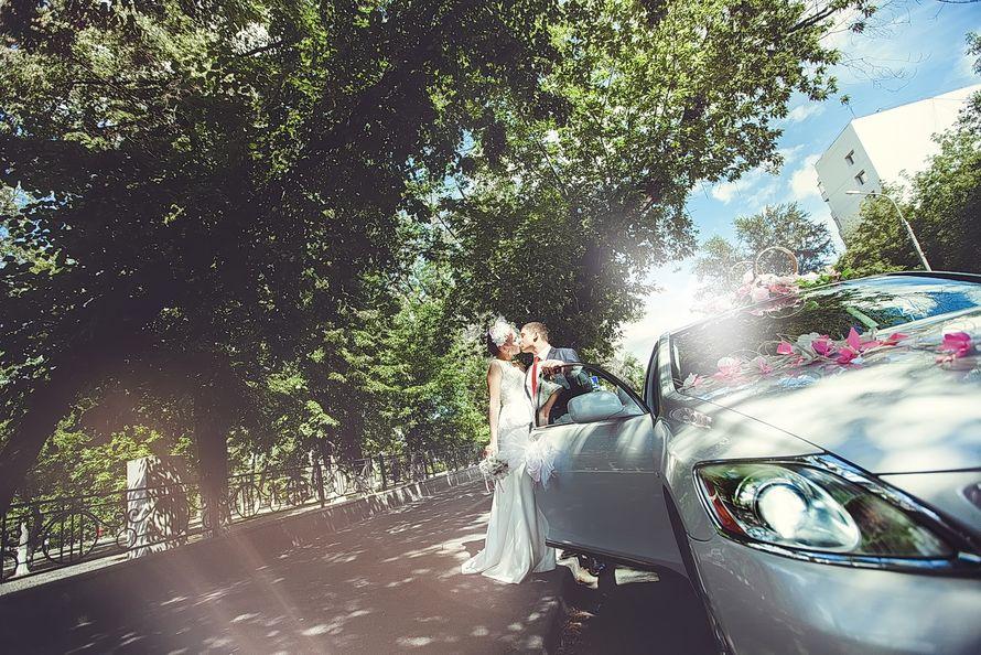 Фотограф на свадьбу. Свадебное портфолио. Тюмень. - фото 3447629 Свадебная фото-видео студия Василия Алексеева