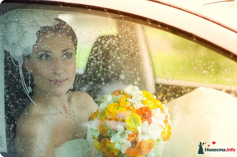 Фото 108558 в коллекции My lemon&camomile wedding - Shuga