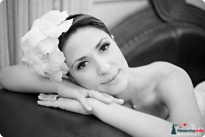 Фото 108576 в коллекции My lemon&camomile wedding - Shuga
