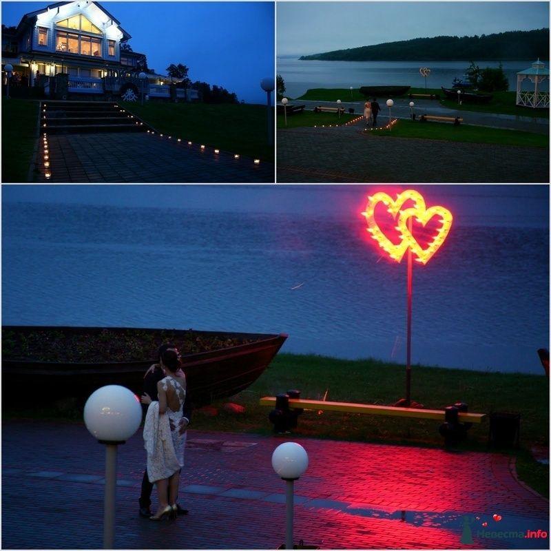 Фото 110453 в коллекции My lemon&camomile wedding - Shuga