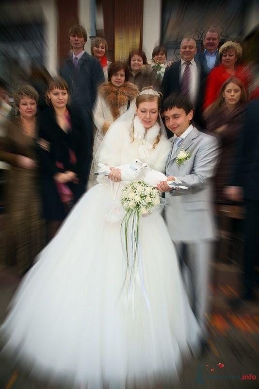 Свадьба - фото 65828 Фотограф Леонид Шафтан