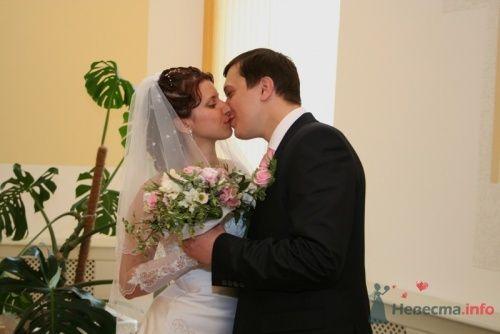 Фото 10730 в коллекции Свадебные фотографии - Фотограф Александр Черноусов