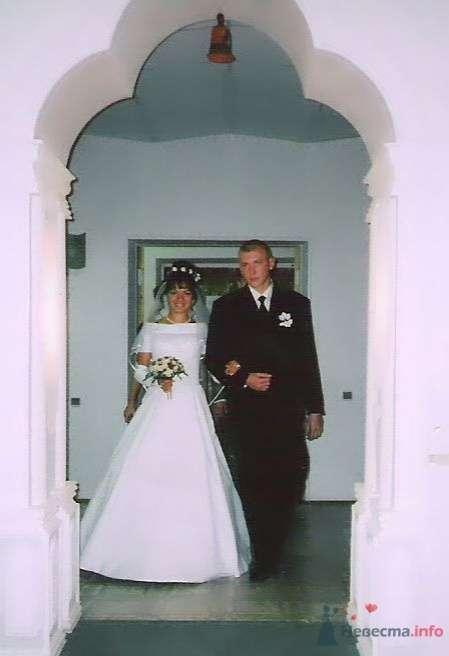 наша свадьба - фото 50181 Morozzka