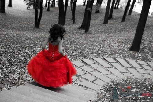 кусково чб - фото 5607 Свадебный фотограф Константин Фотоманофф