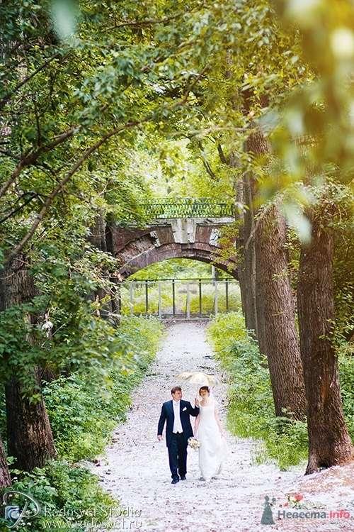 Фото 28350 в коллекции Свадебное фото - Фотограф Радосвет Лапин