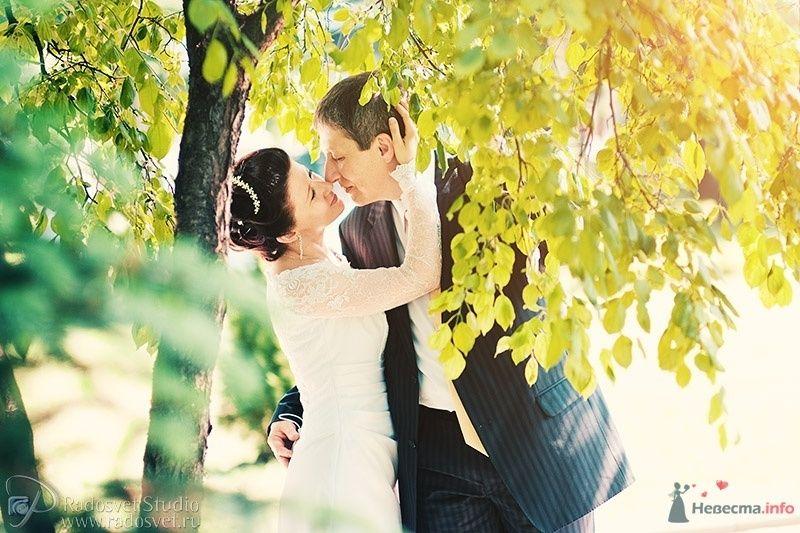 Жених и невеста, прислонившись друг к другу, стоят на фоне осенних деревьев - фото 28352 Фотограф Радосвет Лапин