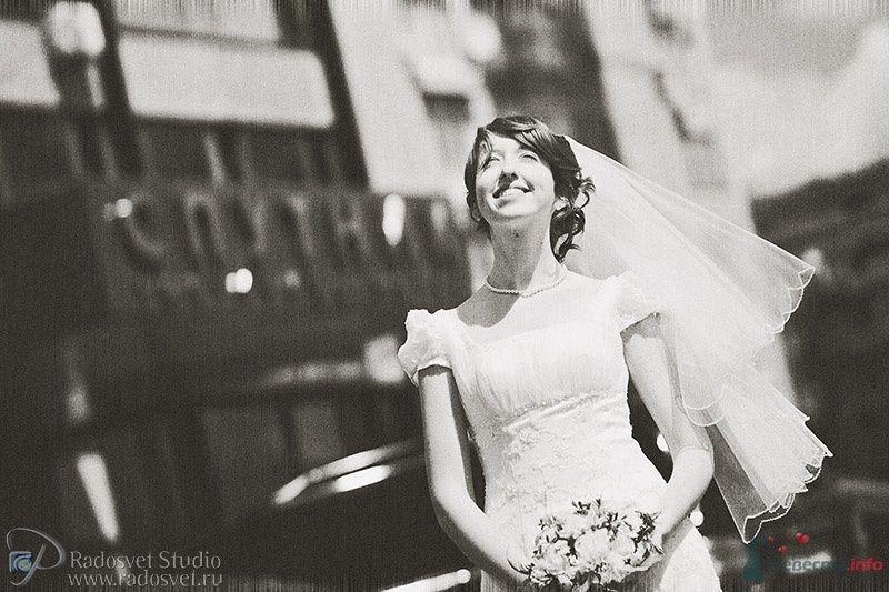 Фото 30831 в коллекции Свадебное фото - Фотограф Радосвет Лапин