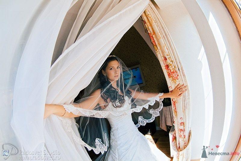 Фото 32927 в коллекции Свадебное фото - Фотограф Радосвет Лапин