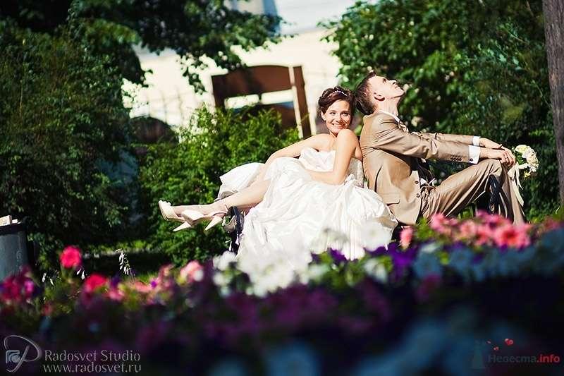 Фото 55870 в коллекции Свадебное фото - Фотограф Радосвет Лапин