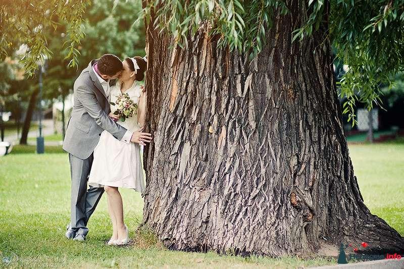 Жених и невеста, прислонившись друг к другу, сидят на фоне дерева - фото 87635 Фотограф Радосвет Лапин
