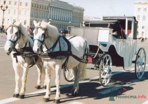 Альтернатива лимузину-2 - фото 9669 Ксюня