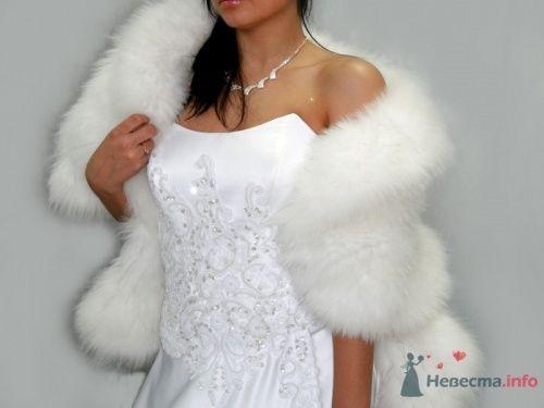 Фото 10589 в коллекции Свадебные шубки - Ксюня