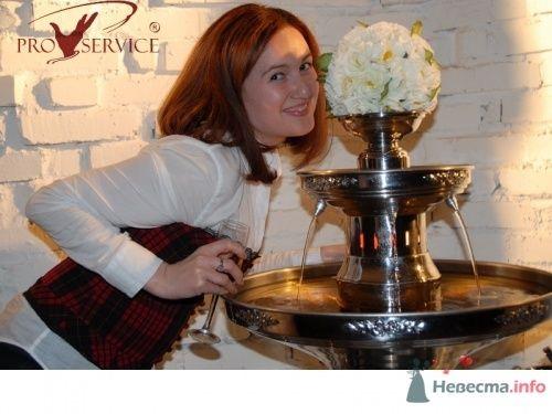 Фото 10754 в коллекции Фонтаны для шампанского