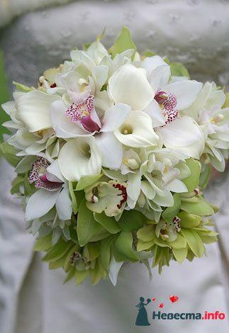 Фото 90134 в коллекции Букет невесты, подружек, и бутоньерка жениха! - Невеста Настенька