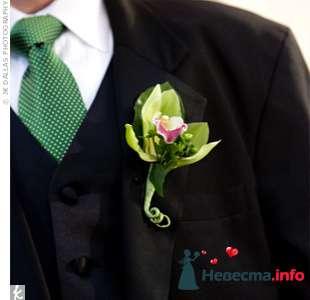 Фото 103305 в коллекции Зеленая свадьба - Невеста Настенька