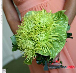 Фото 103324 в коллекции Зеленая свадьба - Невеста Настенька