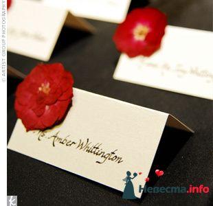 Фото 103390 в коллекции Красная свадьба! - Невеста Настенька