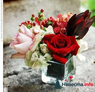 Фото 103398 в коллекции Красная свадьба! - Невеста Настенька