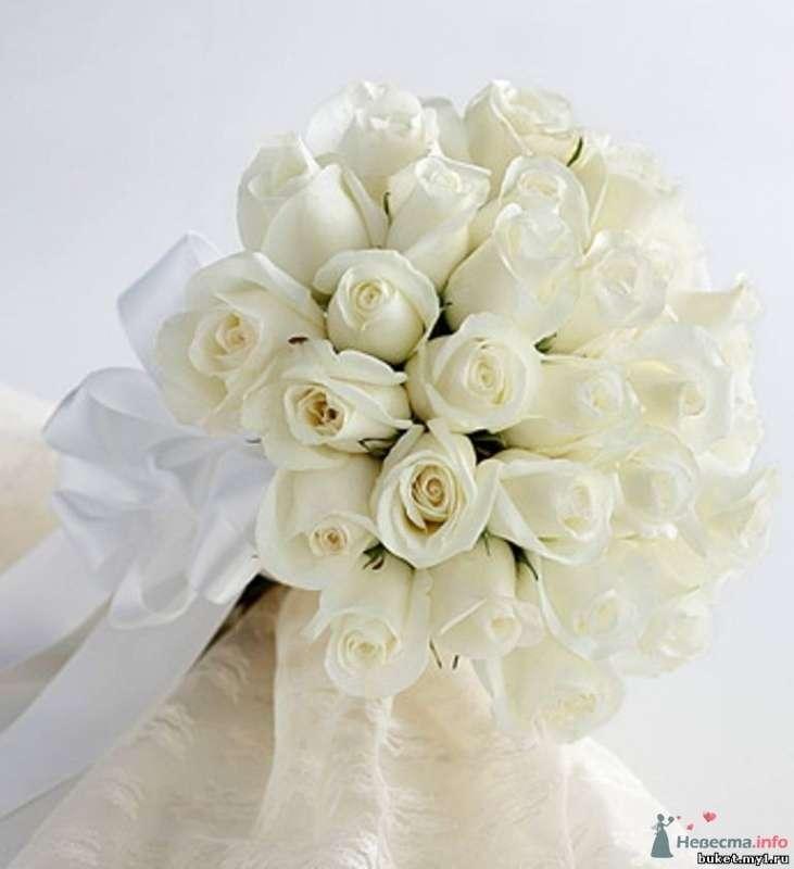Букет невесты в круглом стиле из белых роз, декорированный белой лентой - фото 65751 Egevika
