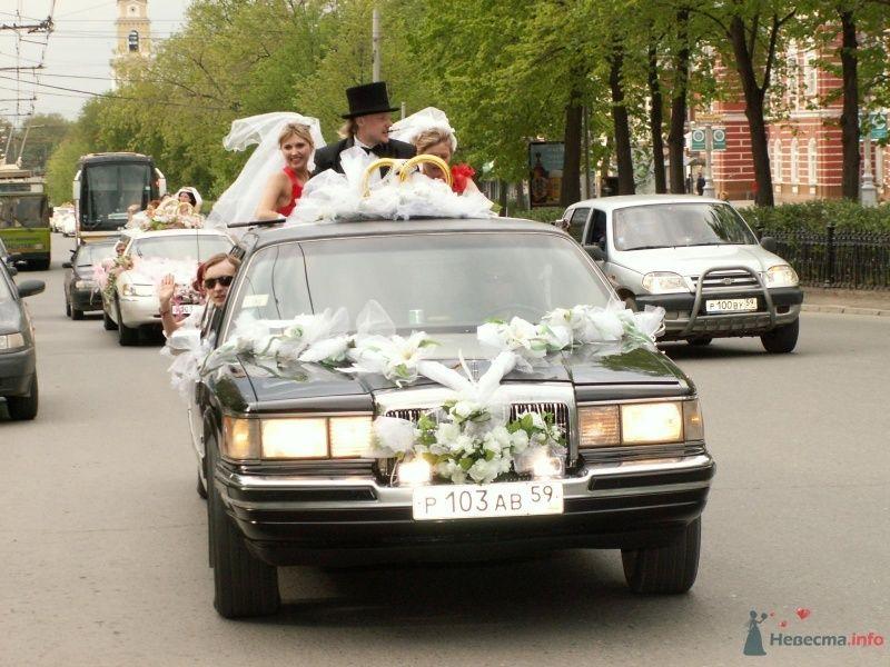 Фото 68991 в коллекции Свадебный Flashmob 1.  - Организатор торжеств Антон Уткин