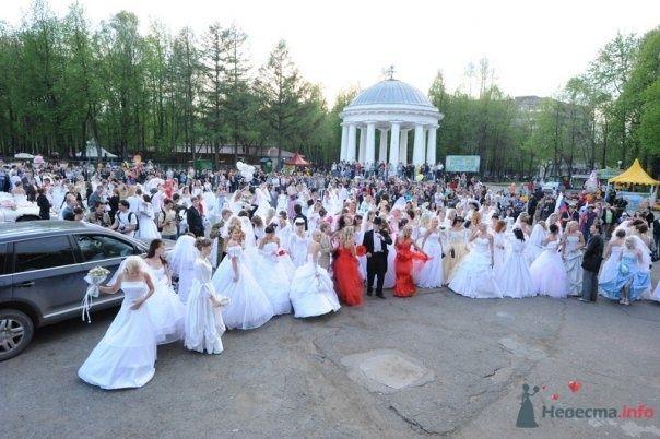 """Фото 69010 в коллекции Свадебный Flashmob 2 """"гламур и брутальность"""""""