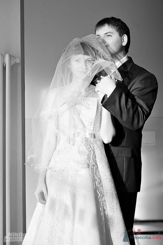 Фото 69589 в коллекции Свадебное портфолио - Свадебный фотограф Никита Полосов
