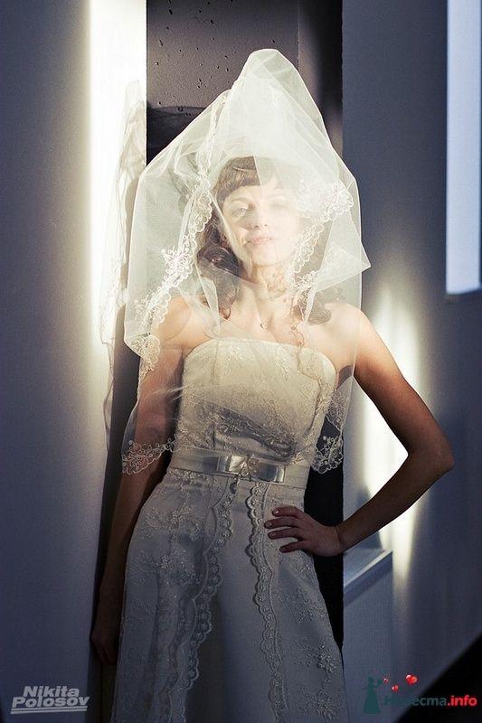 Фото 101371 в коллекции Свадебное портфолио - Свадебный фотограф Никита Полосов