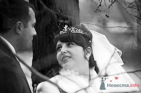 Фото 66425 в коллекции Свадьба