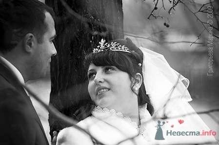 Фото 66425 в коллекции Свадьба - Свадебный фотограф Григорьева Марина