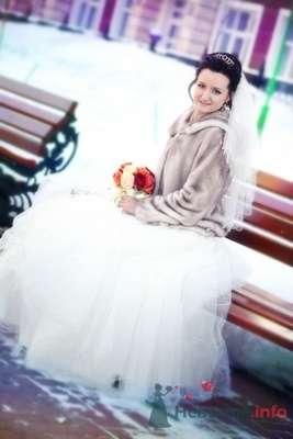 Фото 70254 в коллекции Свадебная фотография - Фотограф Анастасия Яценко