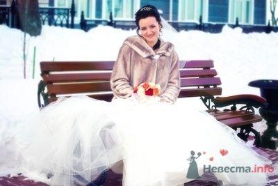 Фото 70270 в коллекции Свадебная фотография - Фотограф Анастасия Яценко