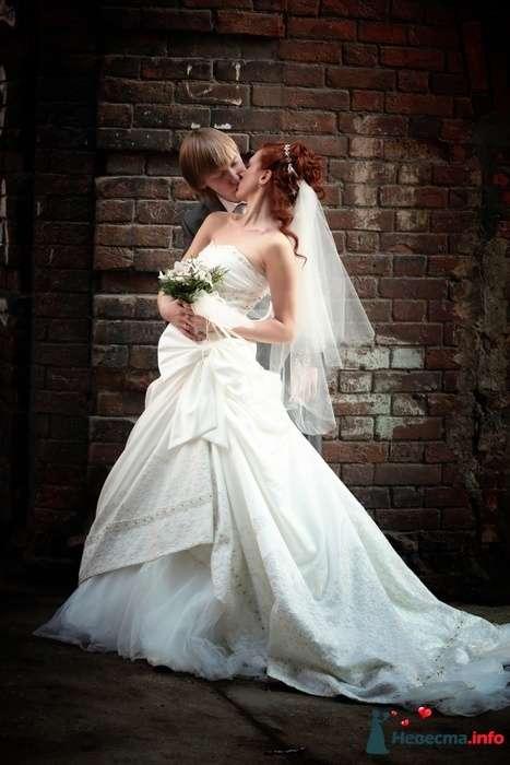 Фото 88852 в коллекции Свадебная фотография - Фотограф Анастасия Яценко