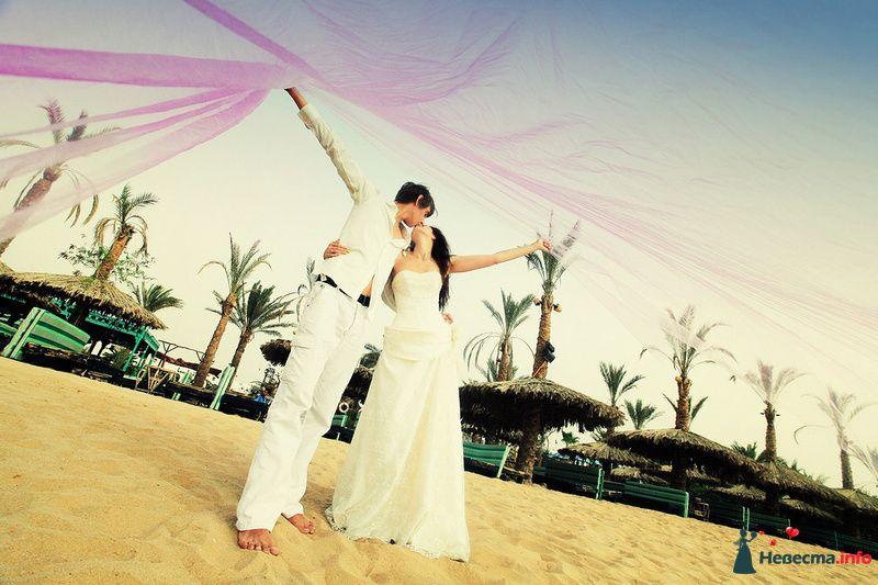 Фото 107717 в коллекции Свадебная фотография - Фотограф Анастасия Яценко