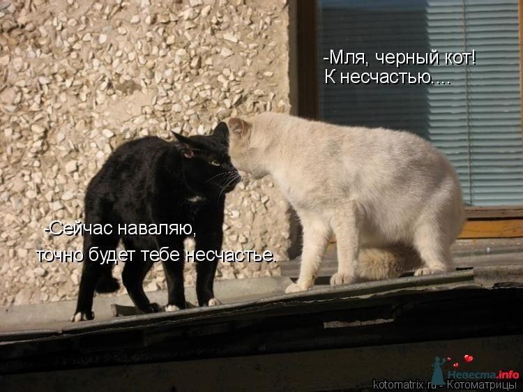 Фото 123168 в коллекции Всякая всячина!) - Настасян