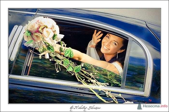 Фото 67568 в коллекции Wedding  - Свадьба - Фотограф Швецов Николай